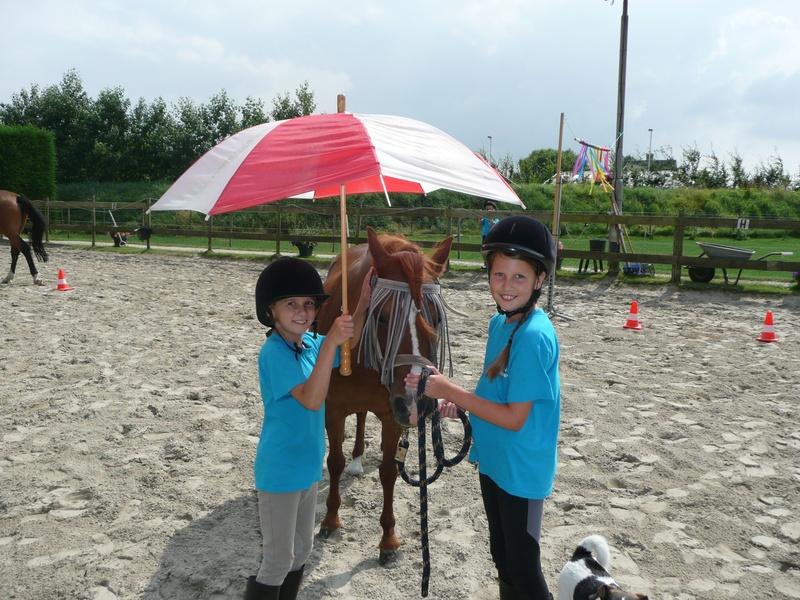 Ponydagkamp (4-dagen)
