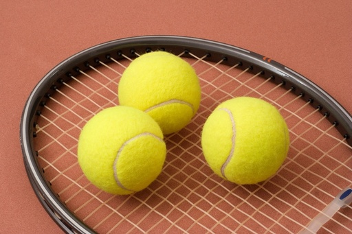 Tennistoernooi interland Nederland-België